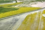 ۵ هزار و ۵۱۰ میلیارد ریال غرامت سیل به کشاورزان پرداخت شد