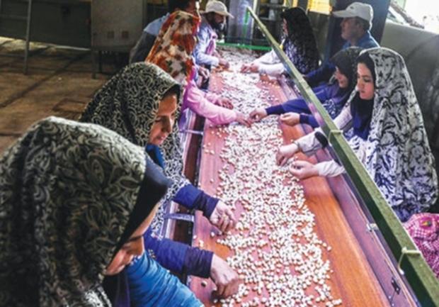 29 درصد وام اشتغال گلستان به بانوان پرداخت شد