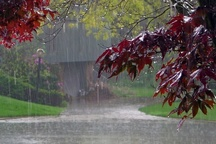 بارش پراکنده باران از فردا در مازندران