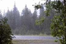 بارش باران در یاسوج از 1200 میلیمتر فراتر رفت