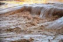 سیلاب در تعدادی رودخانه های فصلی مهریز جاری شد
