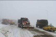 40 مسافر گرفتار در برف جاده طالقان نجات یافتند