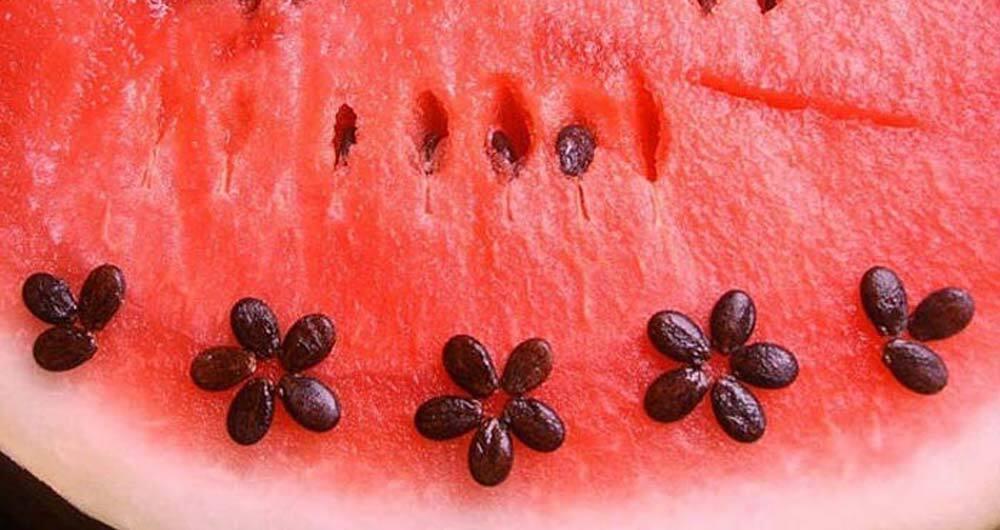 تخمه هندوانه