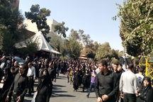 حضور پرشور اتباع بیگانه در مراسم جاماندگان اربعین