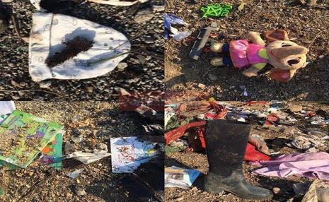 عکس تلخ از بقایای سقوط هواپیمای اوکراینی