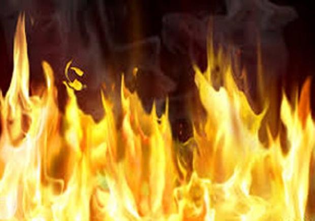 35 راس گوسفند در آتش سوزی سیاه چادر عشایری کازرون سوختند