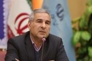 قائم مقام وزیر علوم: ظرفیت آموزش عالی بیش از شرایط موجود است