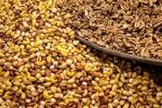 مصرف آجیل در نوروز 90 درصد افزایش یافت!/ امسال قیمت آجیل و خشکبار چقدر است؟