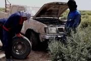 مبارزه با ملخهای صحرایی در جنوب کرمان حمایت میخواهد