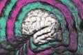 چرا داشتن هوش (IQ) بالا در محیط کار مهم است؟