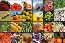 رشد 20 درصدی صادرات صنایع غذایی کشور