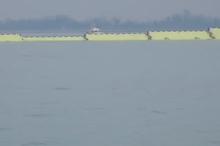 سد متحرک در ونیز