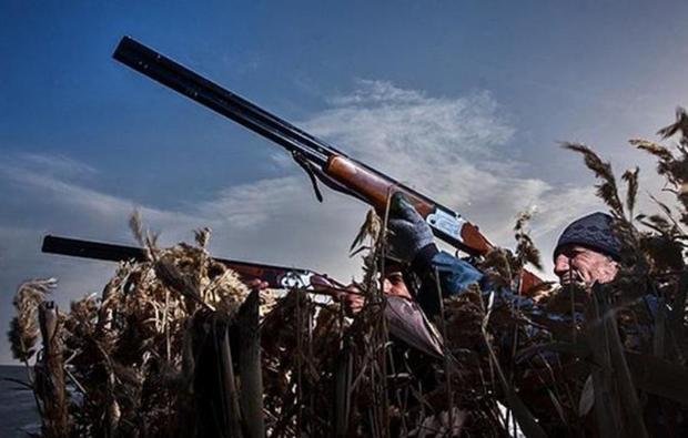 تفنگ های مجوز دار بلای جان پرندگان مهاجر در مازندران