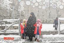 مدارس ابتدایی شهر تهران روز دوشنبه تعطیل است