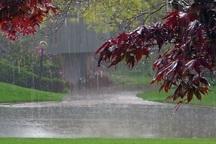 بارش باران در ورامین نسبت به سال گذشته دو برابر شده است