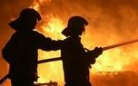 آتش سوزی گسترده در بوستان ولایت تهران + فیلم