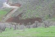 ۶ متخلف حوزه منابع طبیعی مریوان دستگیر شدند