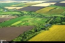 تغییر کاربری اراضی کشاورزی در کامیاران 100 درصد کنترل شد