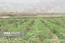 برای حفظ اراضی کشاورزی از ساخت و ساز در این اراضی جلوگیری میکنیم