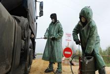 ثبت موارد ابتلا به طاعون خوکی آفریقایی و قرنطینه یک منطقه در روسیه