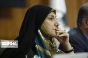 عضو شورای شهر تهران: زنان به دنبال ایجاد فرصت های برابر در فضای عمومی هستند