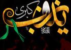 روضه حضرت زینب سلام الله علیها/ حاج آقا مجتبی تهرانی+ دانلود