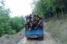 13 تن چوب آلات قاچاق  در نمین کشف شد