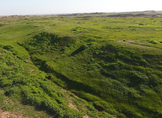 صندوق توسعه ملی حامی منابع طبیعی گلستان