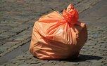 کشفی که منجر به نجات بشر از شر پلاستیک ها خواهد شد!