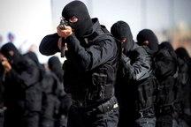 باند اشرار مسلح در عنبرآباد متلاشی شد