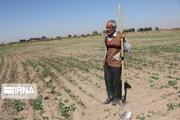 حدود ۸۰۰ مستمری بگیر روستایی و عشایر مازندران مشمول دریافت وام شدند