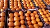 میادین میوه و تره بار 12 فروردین باز هستند