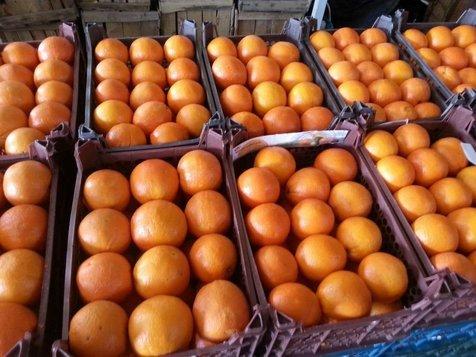 وضعیت بازار گوشت و میوه در شب عید