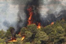 مردم برای پیشگیری از آتش سوزی در مراتع همکاری کنند