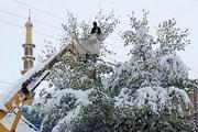 برف و کولاک، برق ۱۰ روستای الیگودرز را قطع کرد