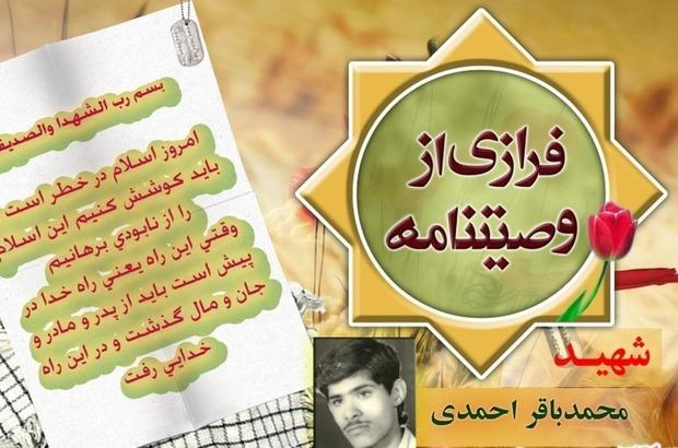 شهید احمدی: ما در این انقلاب سهمی داشتیم