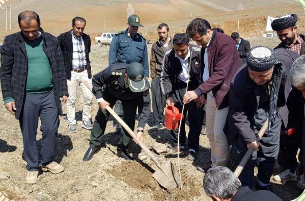 طرح مدیریت جامع در حوزه آبخیز روستای جانوره مریوان اجرا شد