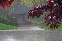 سامانه پرقدرت بارشی امشب وارد ایلام می شود