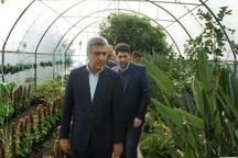 اولین کارگاه آموزشی کشت هیدروپونیک در گیلان افتتاح شد
