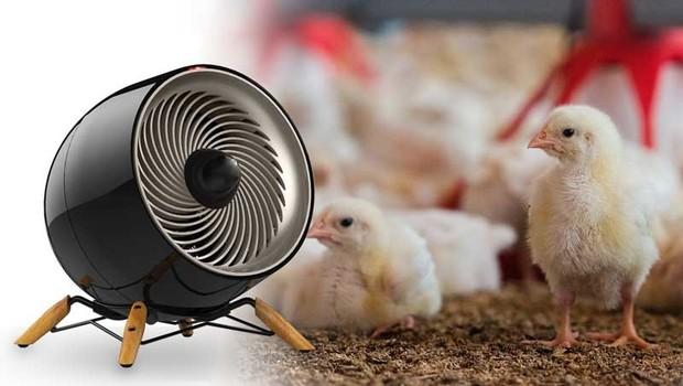 روش های گرم کردن سالن کوچک پرورش پرنده