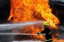 یک کارگاه چوب بری در اسفندآباد شهرستان ملارد طعمه حریق شد
