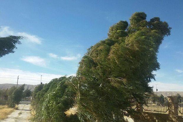 وزش باد پدیده غالب هوای آذربایجانغربی تا ۲۴ ساعت آینده