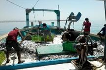 واگذاری مجوز صید به شناورهای چینی صحت ندارد