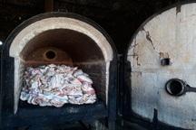 500 کیلوگرم گوشت مرغ فاسد در بیجار کشف و ضبط شد
