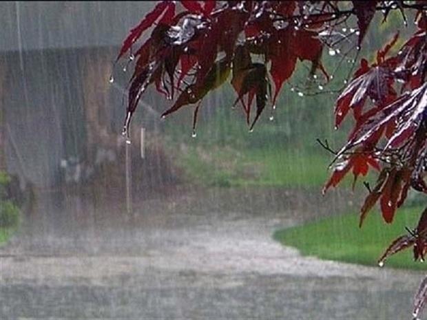 باران 15 شهرستان خراسان رضوی را فرا گرفت