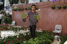 ۶۰ تولیدکننده در نمایشگاه گل و گیاه کرمانشاه حضور دارند