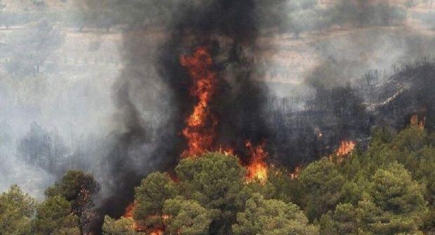 ترکیه در بحران آتش/ اردوغان در سیبل انتقاد