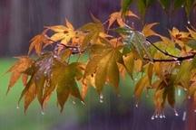 میانگین بارش ها در چهارمحال و بختیاری به 47 میلیمتر رسید