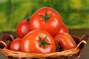 گوجه فرنگی با سرطان معده مقابله می کند