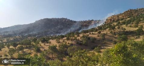 آتش سوزی گسترده در جنگل های بلوط چنگری لرستان + تصاویر